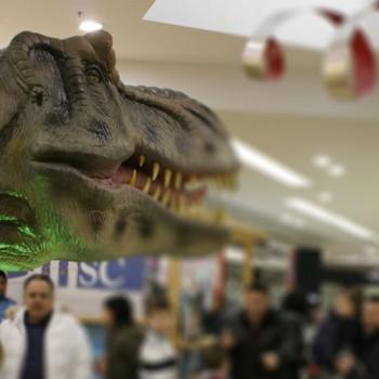 Xone_Mostra Dinosauri