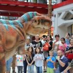 Baby T-Rex – Intrattiene divertendo